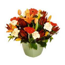 mevsim çiçeklerinden karma aranjman  Amasya çiçek yolla , çiçek gönder , çiçekçi