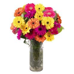 KARISIK GERBERALARDAN CAM VAZO TANZIMI  Amasya güvenli kaliteli hızlı çiçek