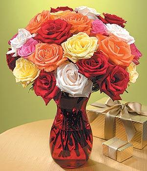 Amasya anneler günü çiçek yolla  13 adet renkli gül
