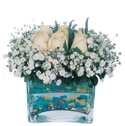 Amasya çiçekçi mağazası  mika yada cam içerisinde 7 adet beyaz gül
