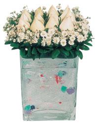 Amasya çiçekçi mağazası  7 adet beyaz gül cam yada mika vazo tanzim