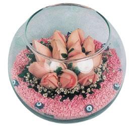 Amasya internetten çiçek satışı  cam fanus içerisinde 10 adet gül