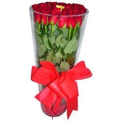 Amasya çiçek online çiçek siparişi  12 adet kirmizi gül cam yada mika vazo tanzim