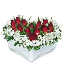 Amasya internetten çiçek siparişi  mika kalp içerisinde 9 adet kirmizi gül