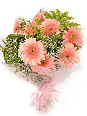 Amasya çiçek satışı  11 adet gerbera çiçegi buketi