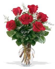 Amasya çiçek gönderme sitemiz güvenlidir  7 adet kirmizi gül cam yada mika vazoda sevenlere