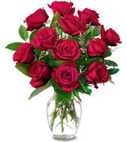 Amasya online çiçek gönderme sipariş  1 düzine kirmizi gül sevenlere özel vazo gülleri