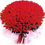 Amasya online çiçekçi , çiçek siparişi  1001 adet kirmizi gülden çiçek tanzimi