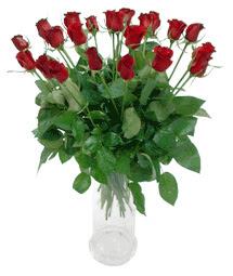 Amasya çiçekçi telefonları  11 adet kimizi gülün ihtisami cam yada mika vazo modeli