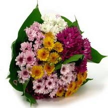 Amasya çiçekçi telefonları  Karisik kir çiçekleri demeti herkeze