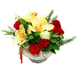 Amasya çiçek gönderme  1 adet orkide 5 adet gül cam yada mikada