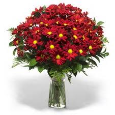 Amasya çiçek yolla  Kir çiçekleri cam yada mika vazo içinde
