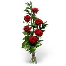 Amasya çiçek siparişi sitesi  cam yada mika vazo içerisinde 6 adet kirmizi gül