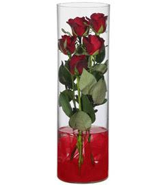cam içerisinde 7 adet kirmizi gül  Amasya çiçekçiler
