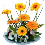 camda gerbera ve mis kokulu kir çiçekleri  Amasya çiçekçi telefonları