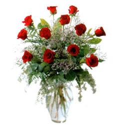 Vazo içerisinde 11 kirmizi gül  Amasya çiçek siparişi vermek