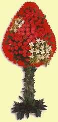 Amasya çiçek gönderme  dügün açilis çiçekleri  Amasya çiçek online çiçek siparişi