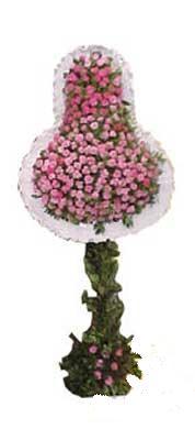 Amasya ucuz çiçek gönder  dügün açilis çiçekleri  Amasya internetten çiçek siparişi
