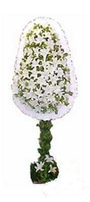 Amasya çiçek siparişi sitesi  nikah , dügün , açilis çiçek modeli  Amasya online çiçek gönderme sipariş