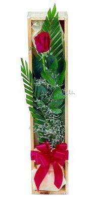 1 adet kutuda kirmizi gül  Amasya çiçek gönderme sitemiz güvenlidir