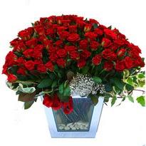 Amasya çiçekçiler   101 adet kirmizi gül aranjmani