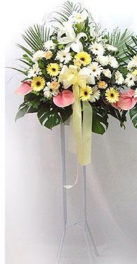 Amasya online çiçek gönderme sipariş   perförje çiçegi dügün çiçekleri