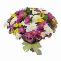Amasya çiçekçi telefonları  Mevsim kir çiçegi demeti