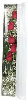 Amasya çiçek siparişi sitesi   5 adet gülden kutu güller