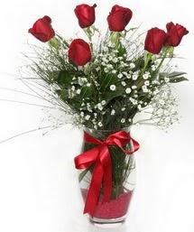 7 adet gülden cam içerisinde güller  Amasya 14 şubat sevgililer günü çiçek
