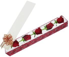 Amasya internetten çiçek satışı  kutu içerisinde 5 adet kirmizi gül