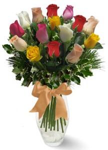15 adet vazoda renkli gül  Amasya internetten çiçek satışı