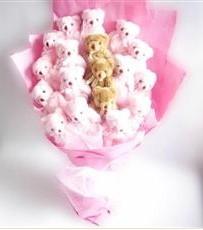 17 adet pelus ayicik buketi  Amasya İnternetten çiçek siparişi