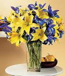 Amasya anneler günü çiçek yolla  Lilyum ve mevsim  çiçegi özel