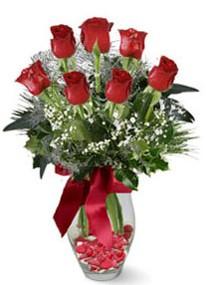 Amasya internetten çiçek siparişi  7 adet kirmizi gül cam vazo yada mika vazoda