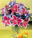 Amasya çiçek mağazası , çiçekçi adresleri  Sevgi bahçesi Özel  bir tercih
