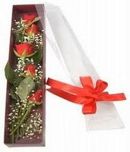 kutu içinde 5 adet kirmizi gül  Amasya internetten çiçek siparişi
