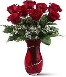 Vazo içinde 8 adet kirmizilar içinde güller  Amasya internetten çiçek siparişi