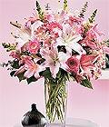 Amasya çiçek yolla , çiçek gönder , çiçekçi   Kazablanka biçme vazoda