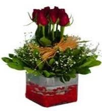 Amasya çiçek gönderme  7 adet mika yada cam vazoda gül tanzimi