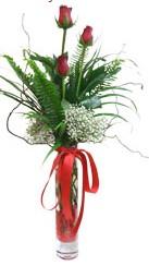Amasya çiçek siparişi sitesi  3 adet kirmizi gül vazo içerisinde