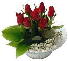 Amasya internetten çiçek satışı  cam yada mika içerisinde 5 adet kirmizi gül