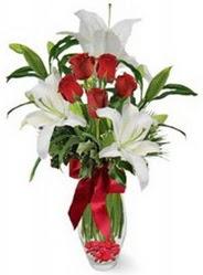 Amasya çiçek siparişi vermek  5 adet kirmizi gül ve 3 kandil kazablanka