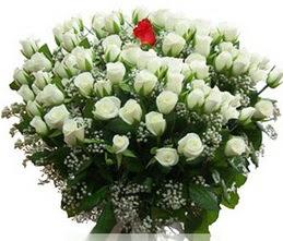 Amasya internetten çiçek satışı  100 adet beyaz 1 adet kirmizi gül buketi