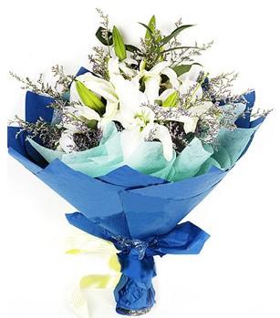 Amasya anneler günü çiçek yolla  4 adet dal kazablankadan görsel buket