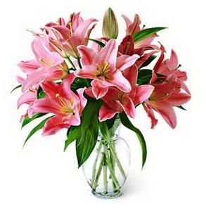 3 dal kazablanka görsel vazosu  Amasya internetten çiçek siparişi