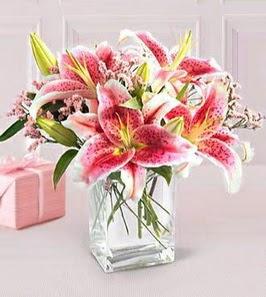 2 dal kazablanka görsel vazosu  Amasya çiçek siparişi sitesi