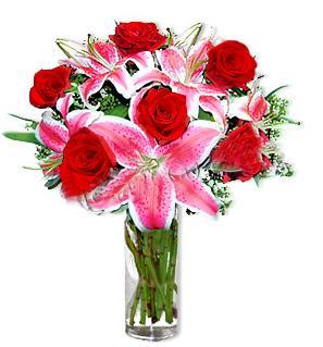 Amasya çiçek yolla  1 dal cazablanca ve 6 kırmızı gül çiçeği