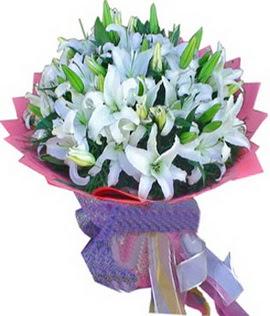 7 dal cazablanca görsel buketi  Amasya çiçekçi mağazası