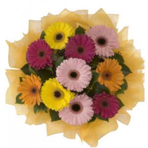 Amasya İnternetten çiçek siparişi  11 adet karışık gerbera çiçeği buketi