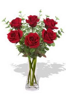Amasya çiçekçi mağazası  6 kırmızı gül vazosu